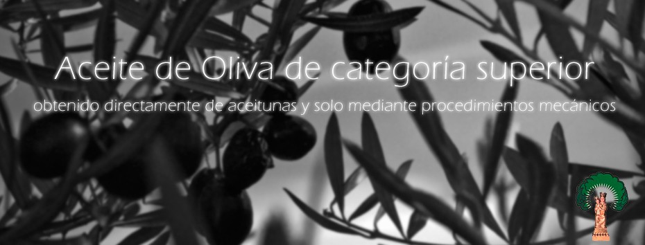 Comprar-Aceite-de-Oliva